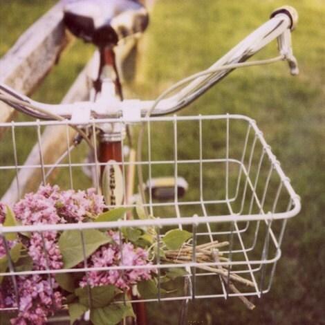 Fine Art Polaroid Photograph- Summer Love- Alicia Bock