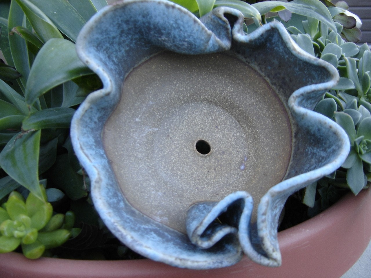 ceramic bowl planter