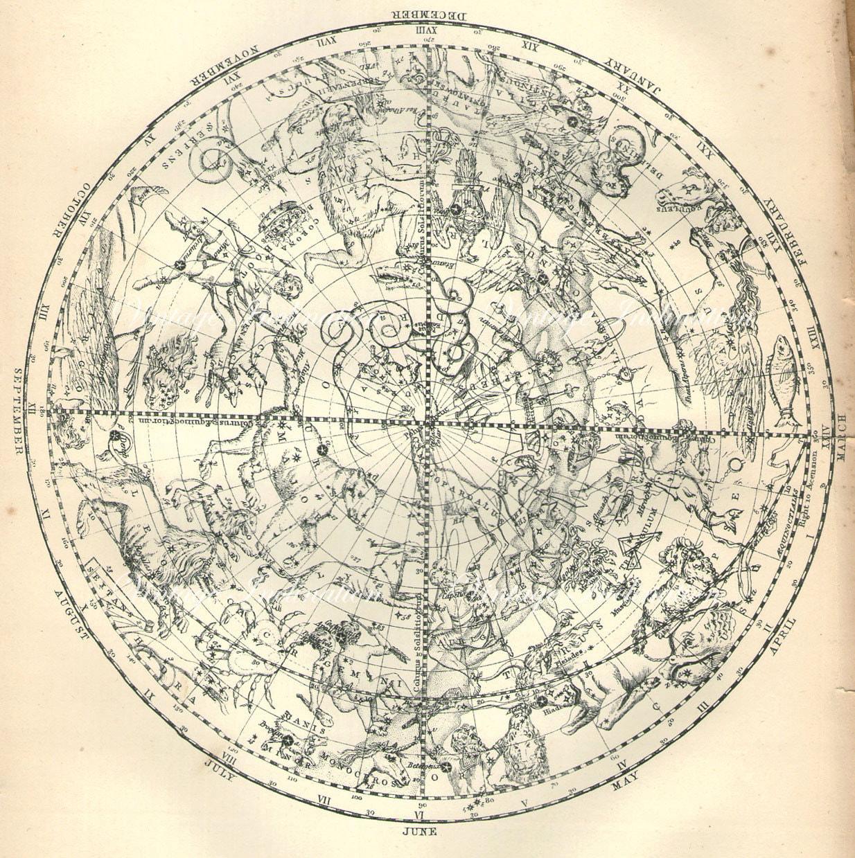 astronomy charts northern hemisphere - photo #39