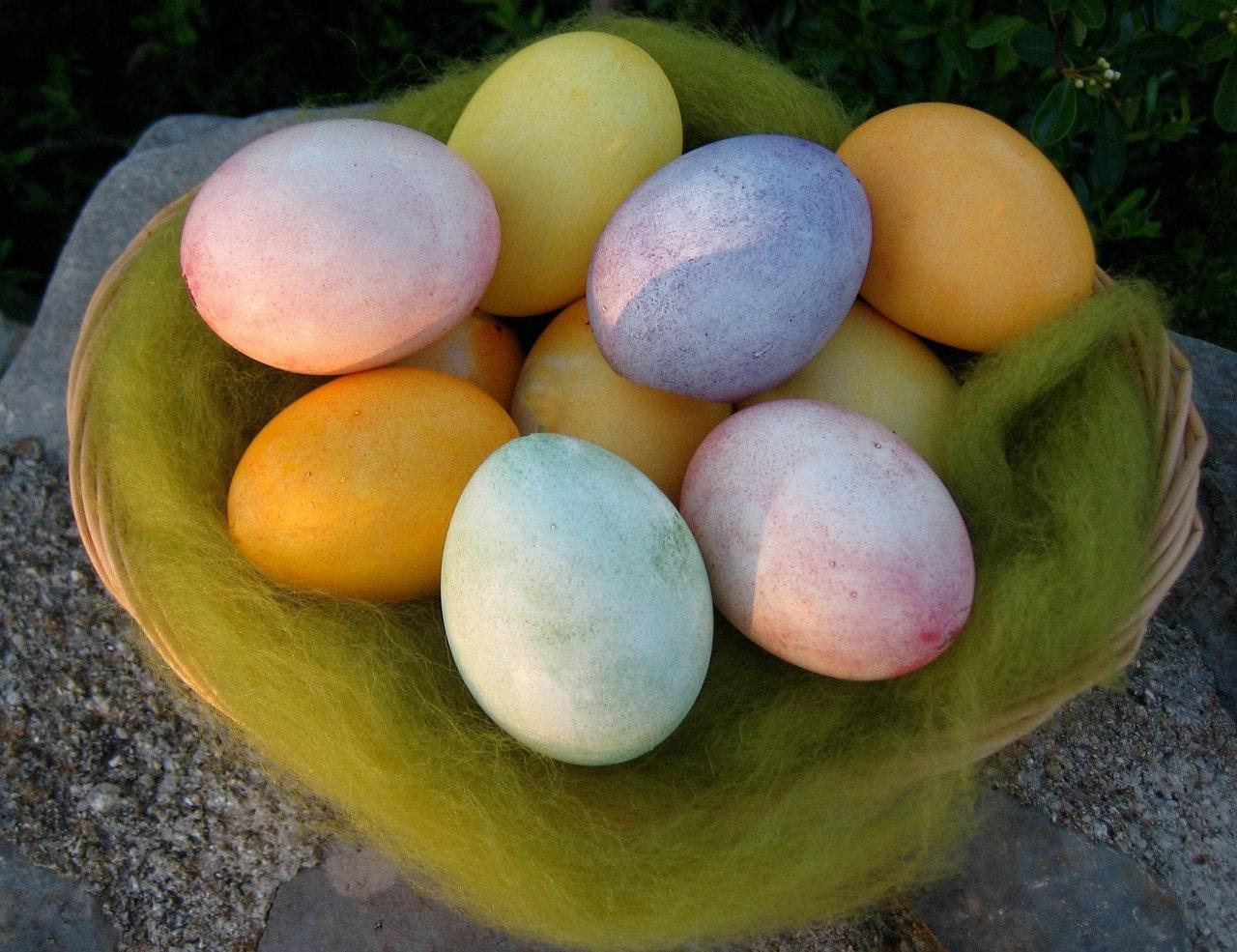 All-Natural Easter Egg Dye Kit