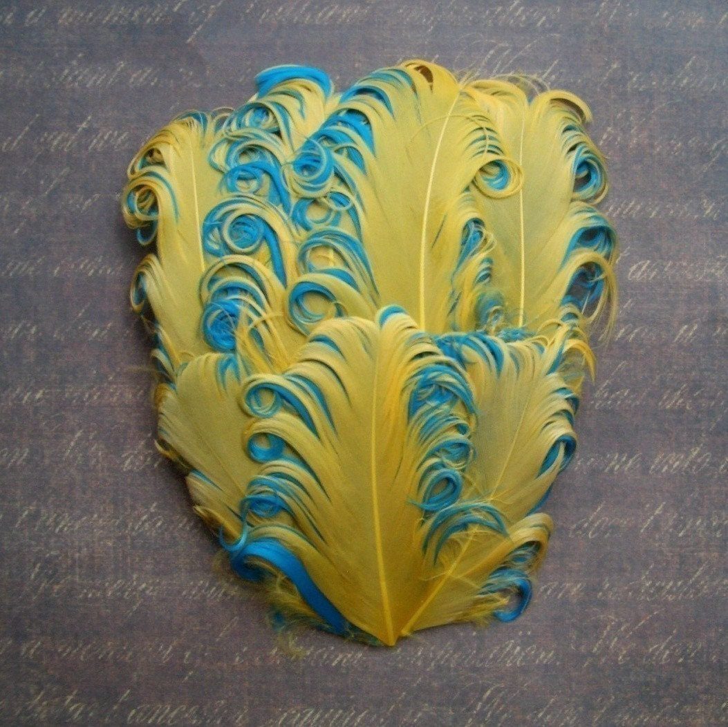 1 Gold on Aqua Curled Goose Feather Pad