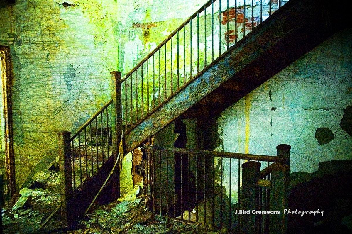 Abandoned Beauty 8x12 photograph print - birdseyephotography