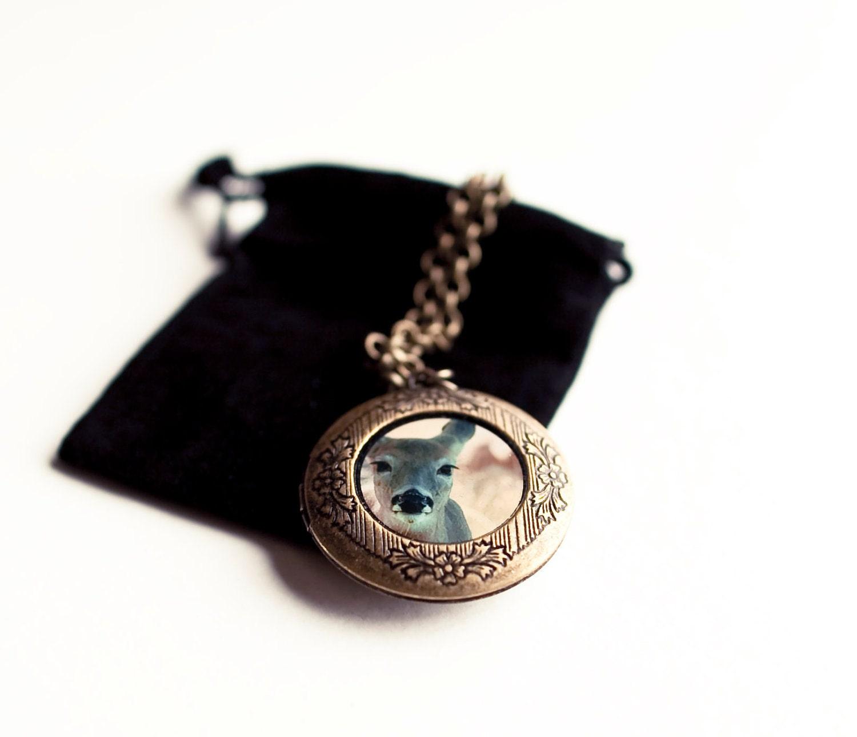 Изображение медальон, голова оленя Fariy сказка-О Олень - олень ожерелье носимых искусство для нее - нейтральные и коричневый женский подарок