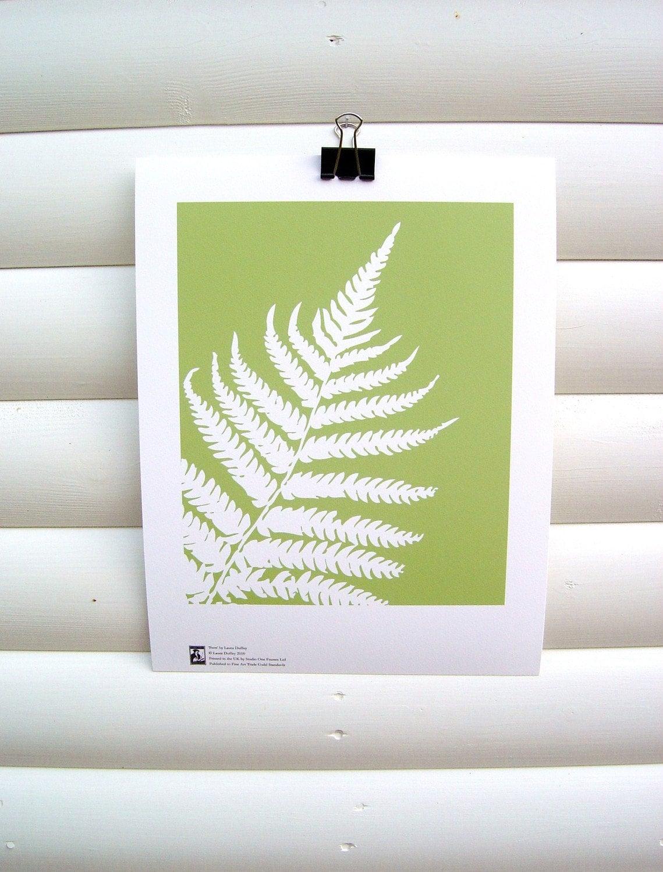 10x8 Giclee Print - Fern (Dryopteris filix-mas) - Botanical Paper Cut Green