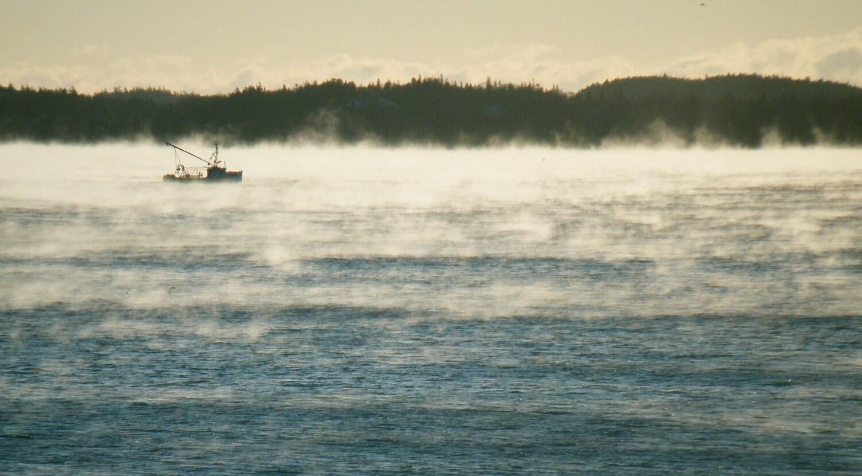 Sea Smoke off Jellison Cove - MaineCoastPrints