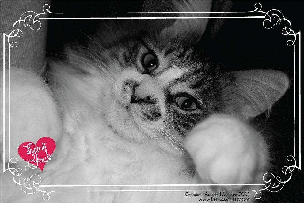 Help No-Kill Shelters - Printable PDF Thank You Card - Donate 1US Dollars