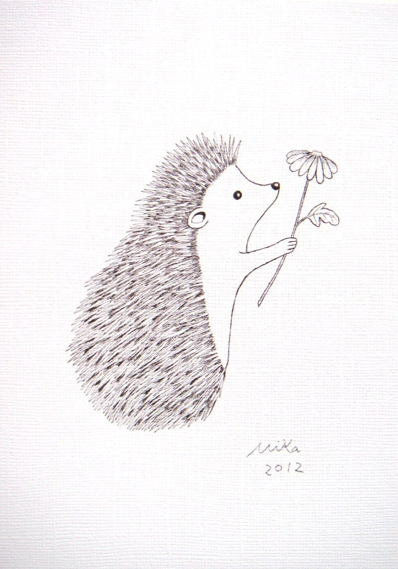 Line Drawing Hedgehog : Cute hedgehog drawing imgkid the image kid has it