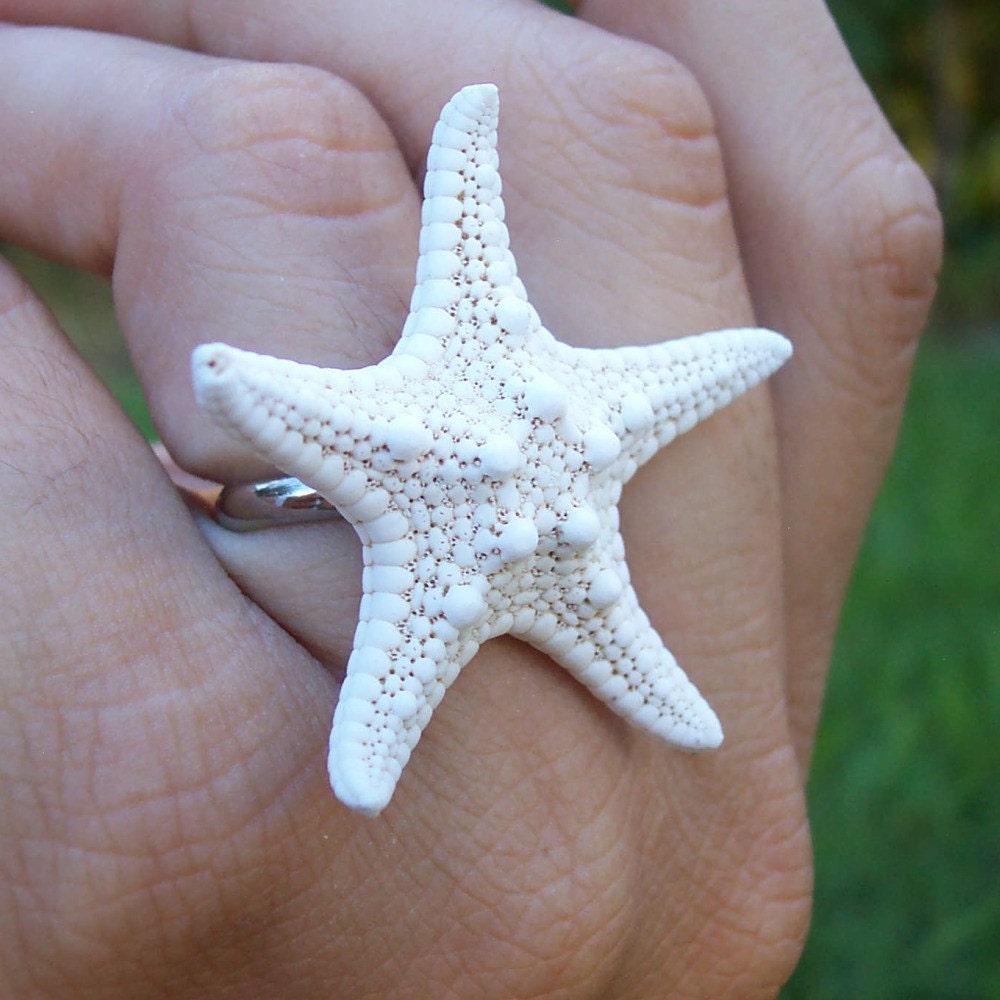 Реальная Морская звезда кольцо белого небольшой пляж сокровищ реального Starfish