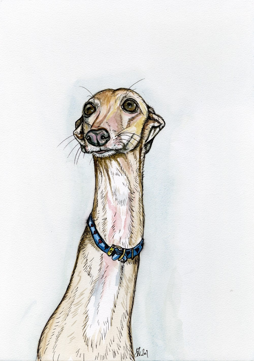 A LITTLE CONFUSED - ITALIAN GREYHOUND DOP PRINT - 5 X 7 INCH
