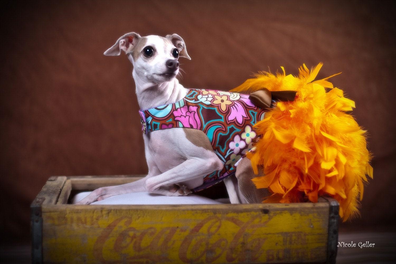 Веселые оранжевой перо Harness собак платье