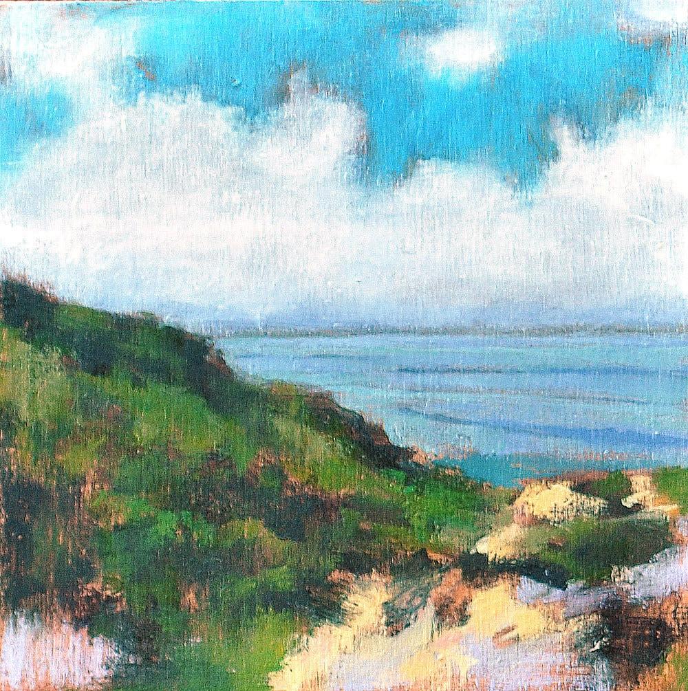San Diego California Ocean Landscape La Jolla Torrey Pines by Kevin Inman Art