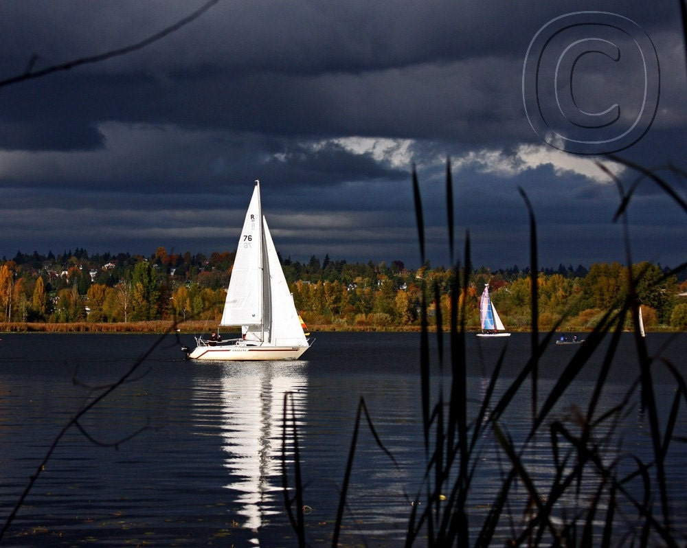 Autumn Sail -  8 X 10 Color Photograph