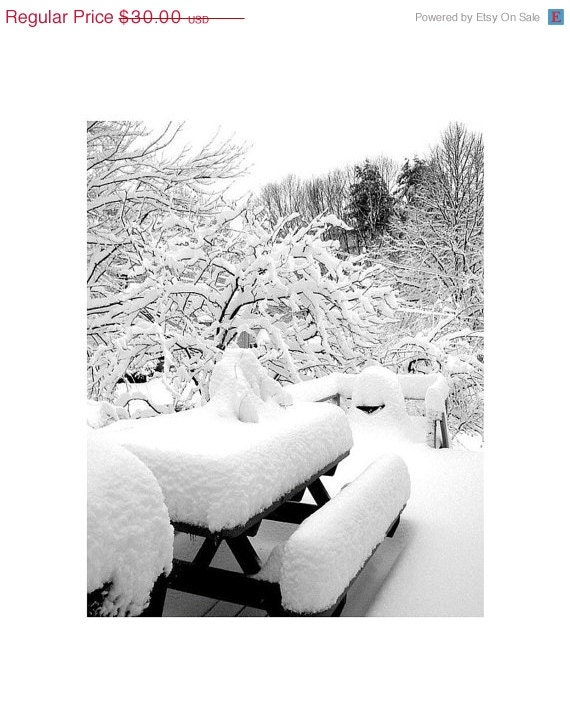 Snow Covered Deck, 16 x 20 Black And White Fine Art Photograph,  Snow Storm, Portland, Maine, Winter, The Maine View