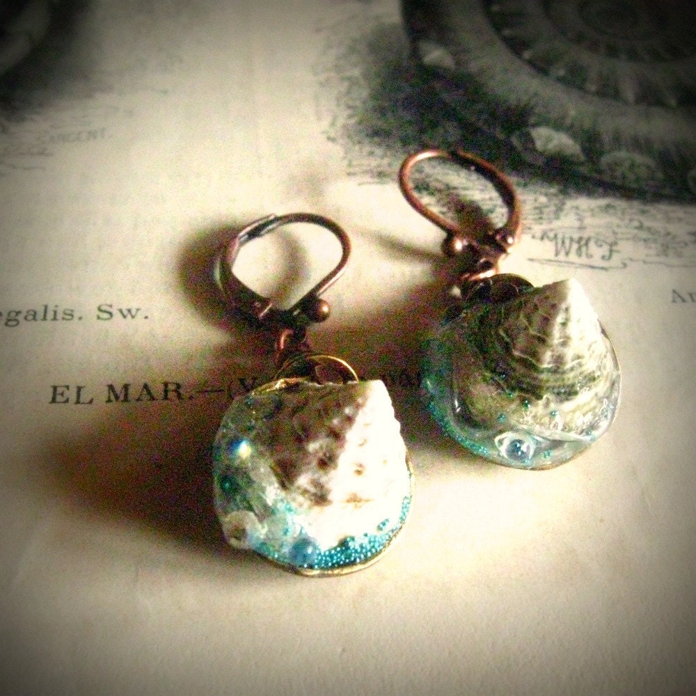 sea  earrings Nautilis Regalis ocean shell dangles - MiddleEarths