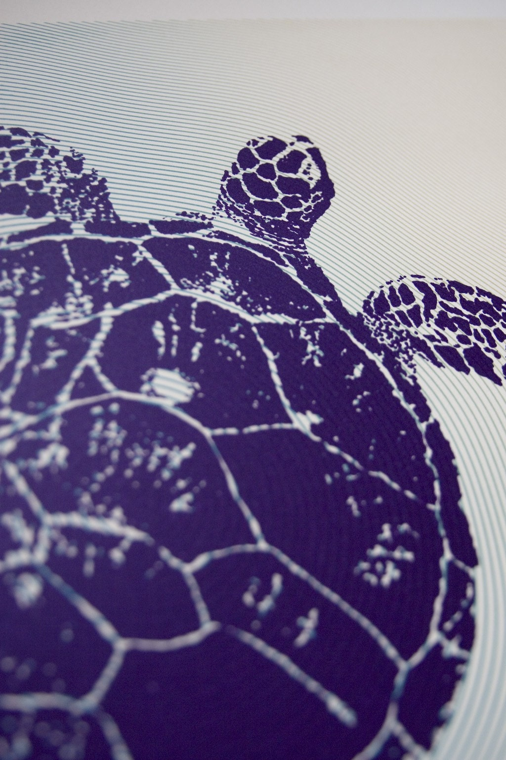 Sea Turtle Poster by VivaDM