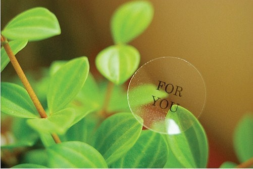 Transparent Circle Sticker - FOR YOU ( 30 ea stickers 1 set)