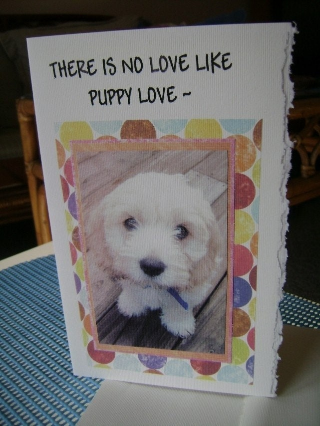 THERE IS NO LOVE LIKE PUPPY LOVE ALL OCCASION GREETING CARD-FEATURING COCKAPOO PUPPIES