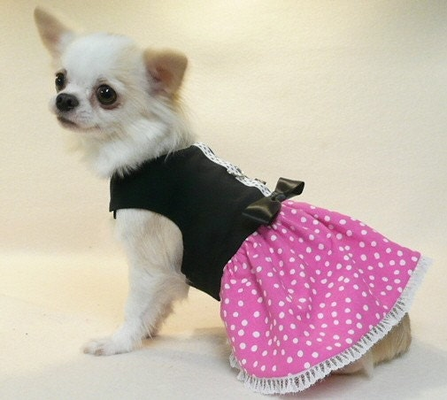 Items similar to dog clothes glamour girl party dress - Dog clothes for chihuahuas ...