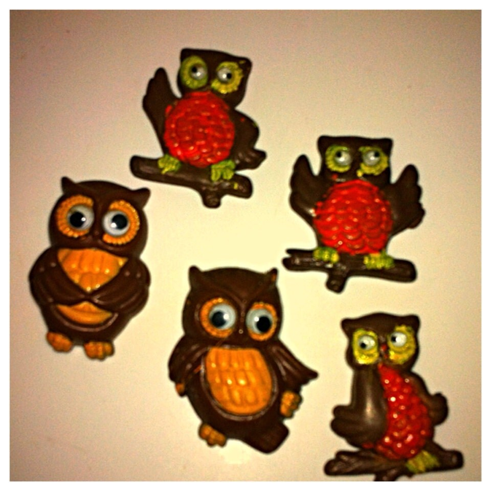Vintage Owl Kitchen Decor: Vintage Google Eyed Owl Magnets-Retro Kitchen Decor By