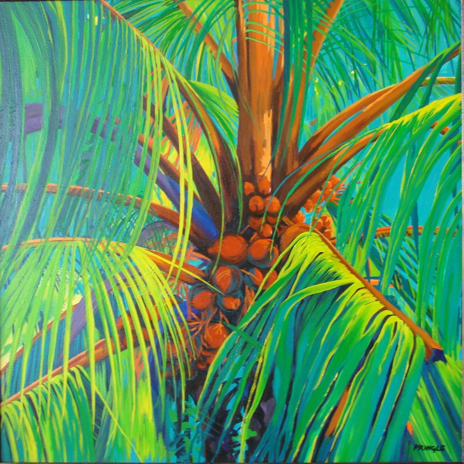 Coconut Palms by Sheila Pringle
