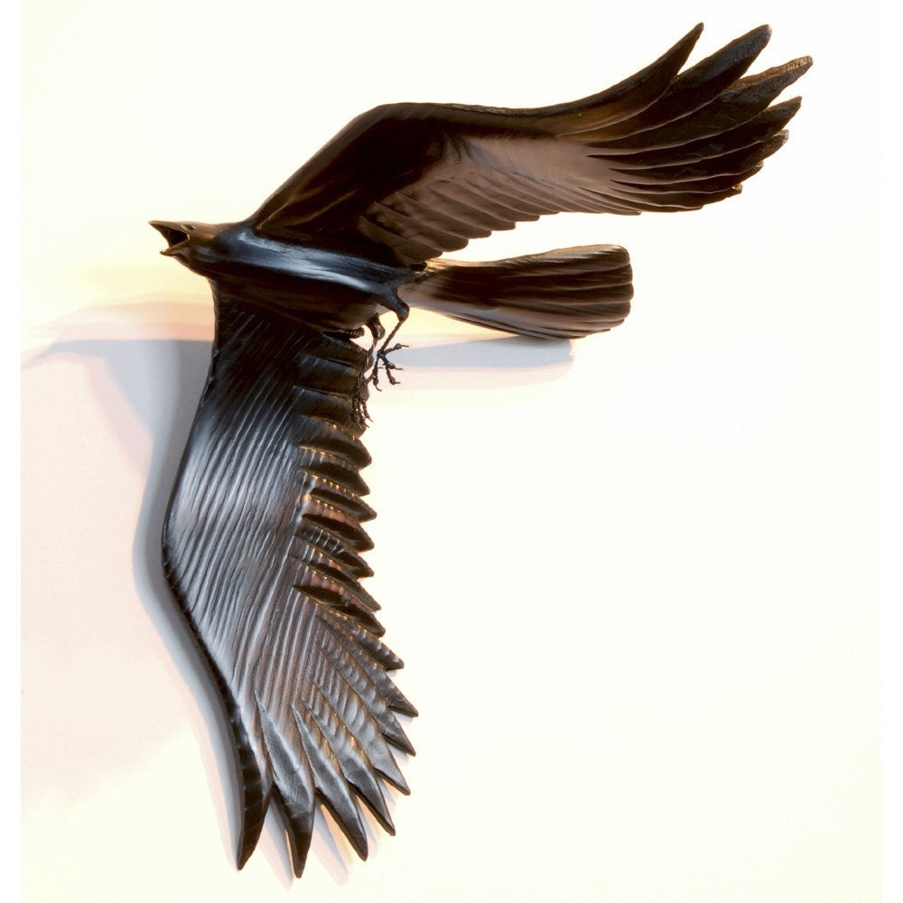 Flying Crow 1
