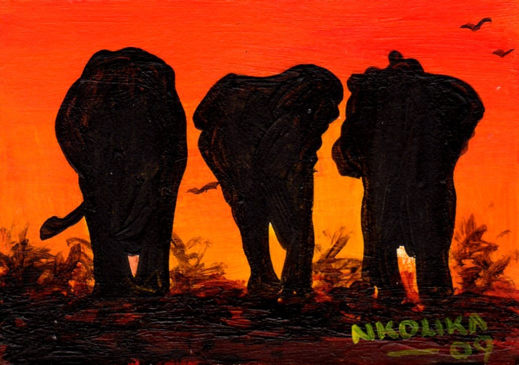 African Elephant Silhouettes in the sunset