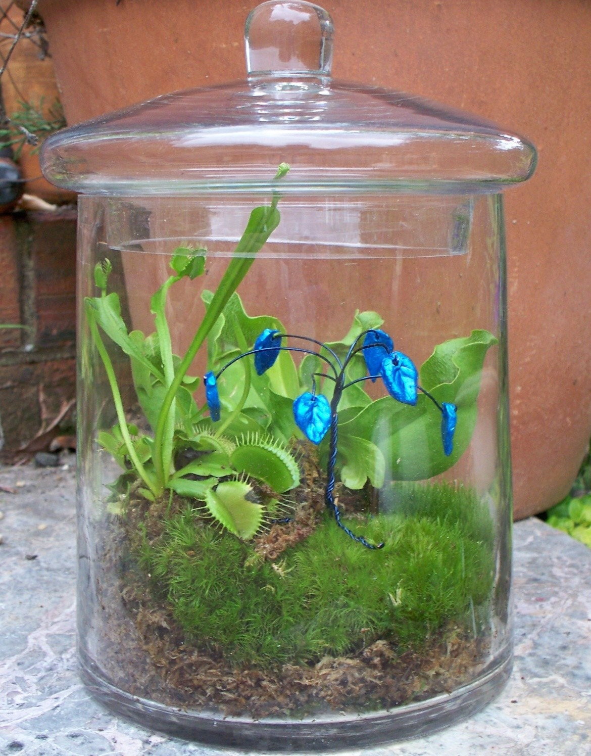 Blue on Blue Bonsai - Wire Tree Terrarium Accent - Hand Sculpted Leaves - Tree for Moss Terrarium