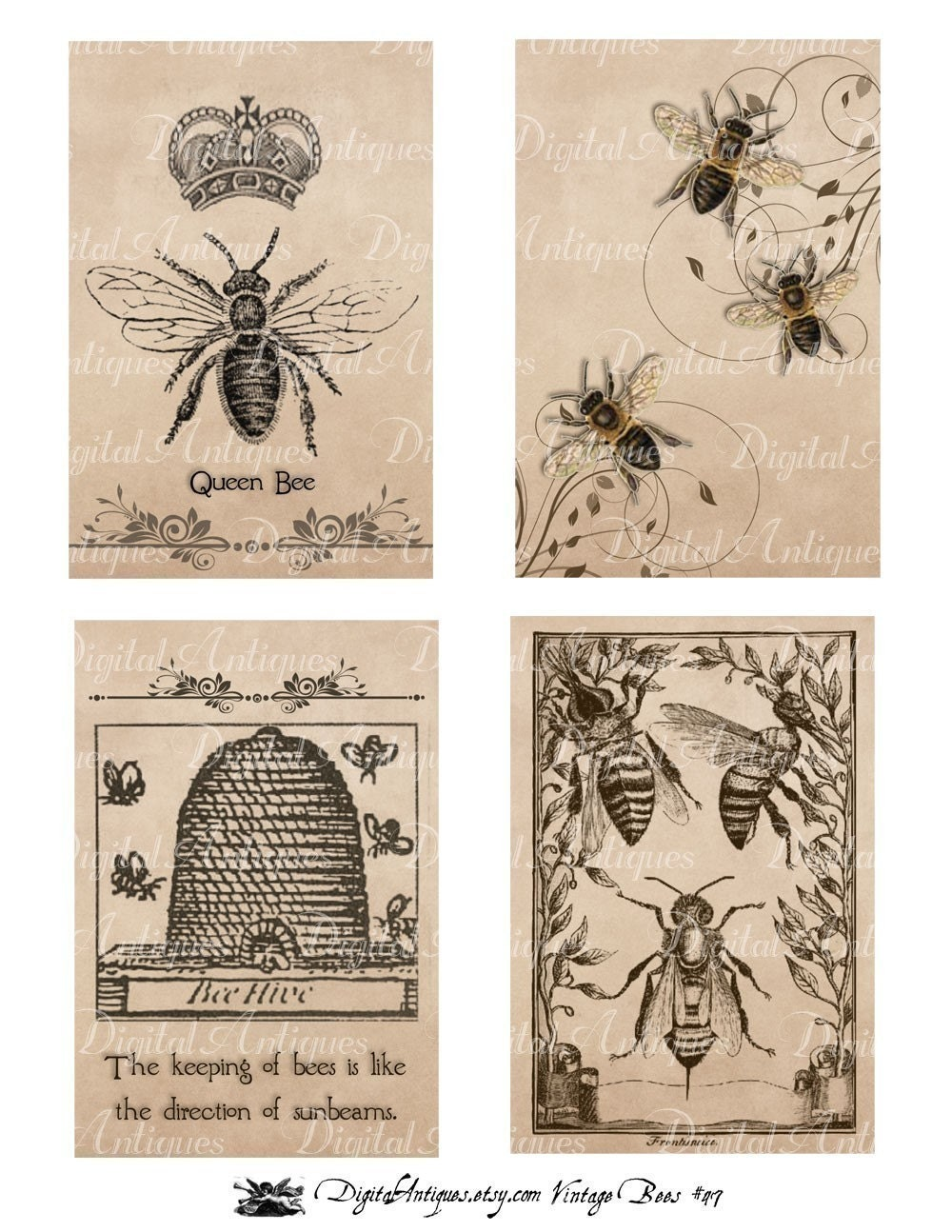 This is an image of Sweet Honey Bee Printables