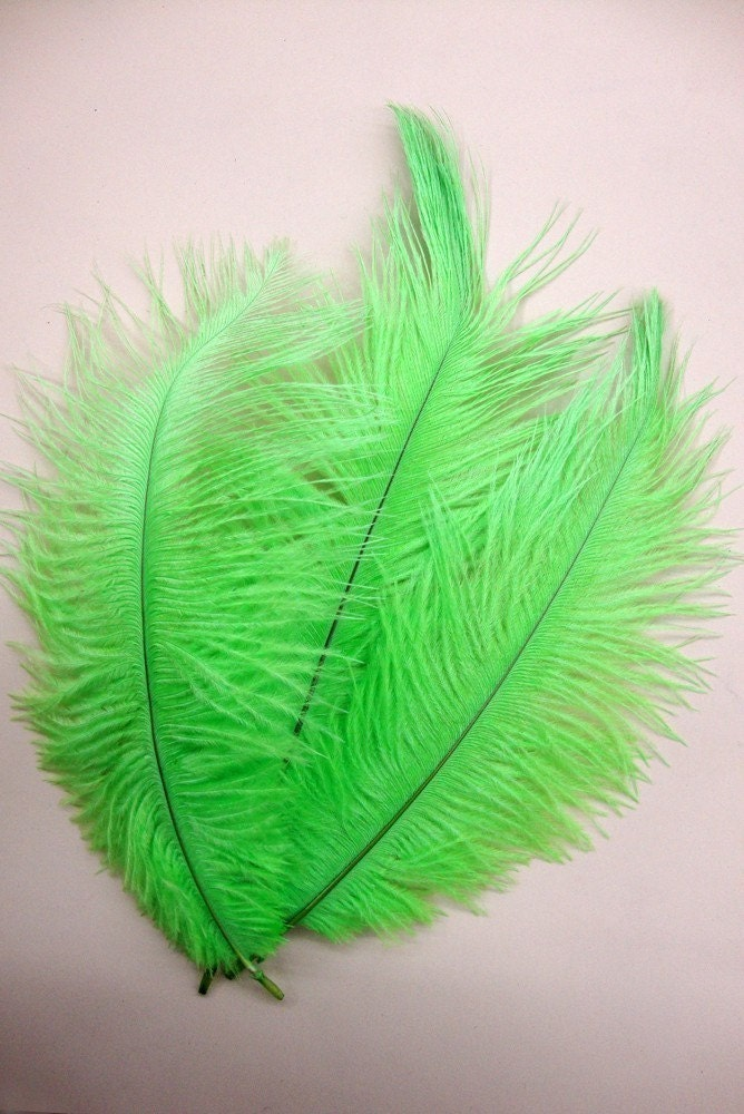 S A L E - 3 Lime Baby Ostrich Plumes.