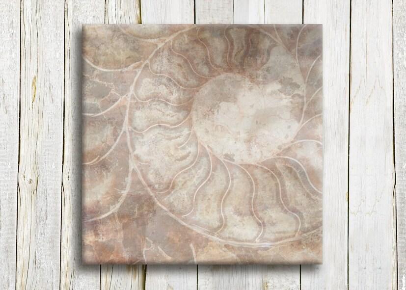 "Nautical art - brown shades - Sea shell art - 12""/12"" - 30/30 cm - hayagold"