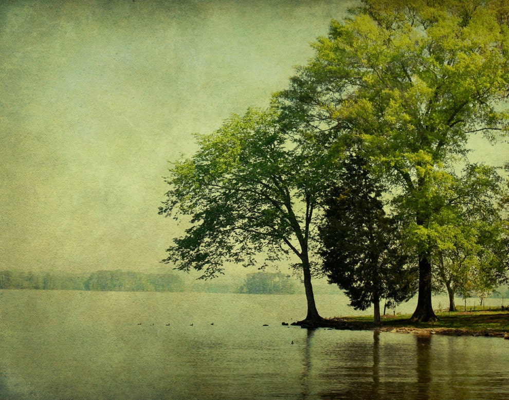 "11x14  Print of ""Trees at the River's Edge"" - VBeaudry"