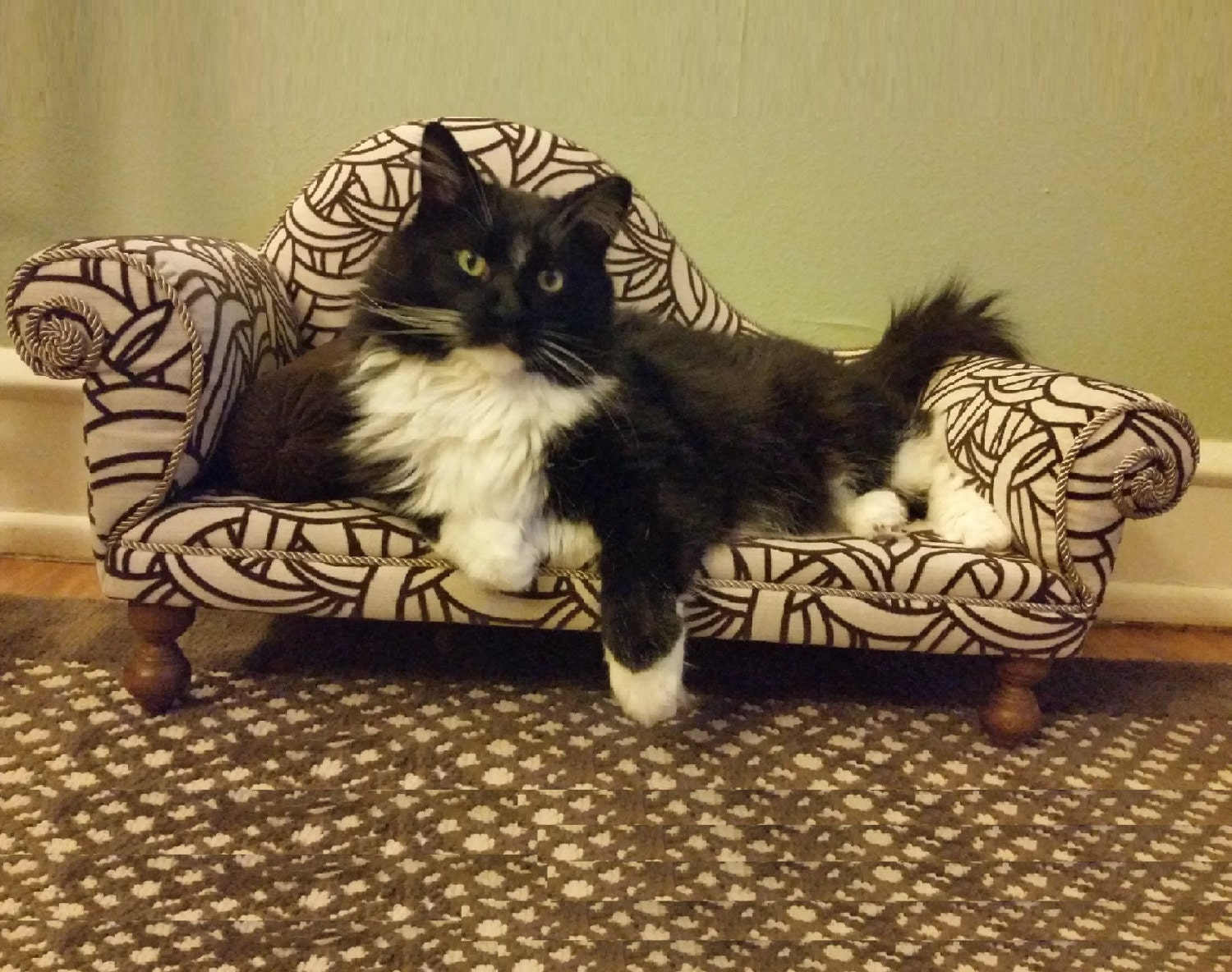 14 Pet Beds That Are Better Than What Fido Is Currently Sleeping On picture