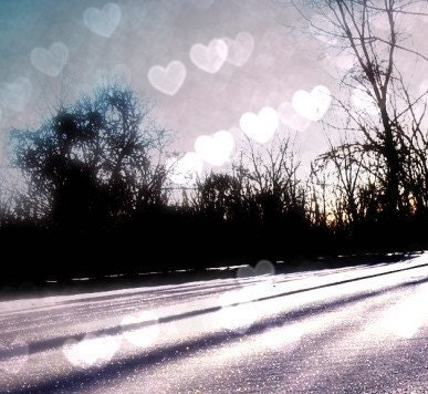 Winter Love - Fine Art Photographic Print on Metallic Paper  FREE SHIPPING