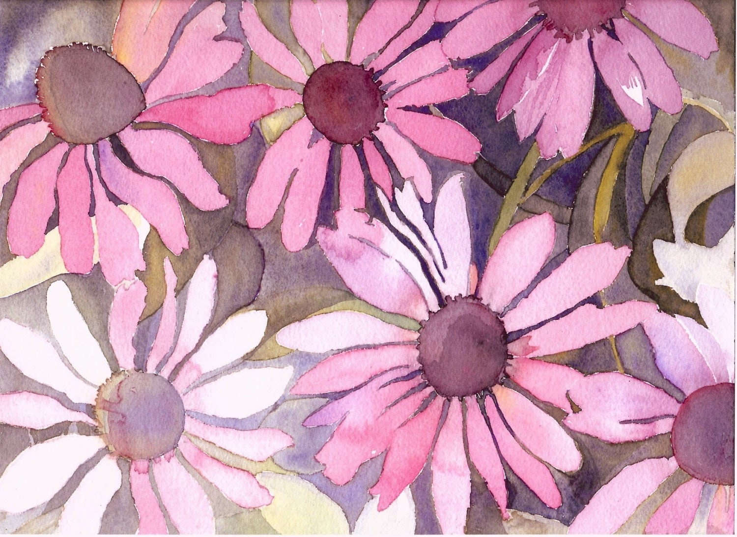 Cone Flowers Watercolor Print - suzannedrown