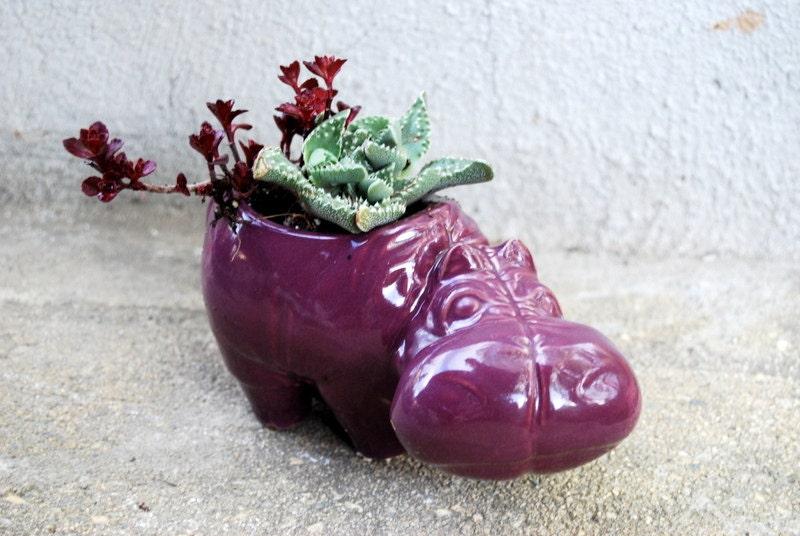 hippo planter in grape purple