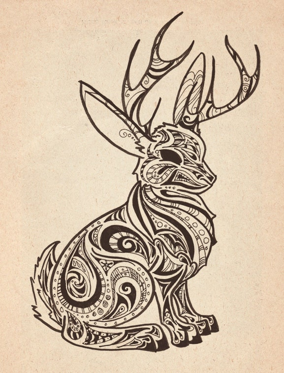 Gallery For gt Jackalope Drawing
