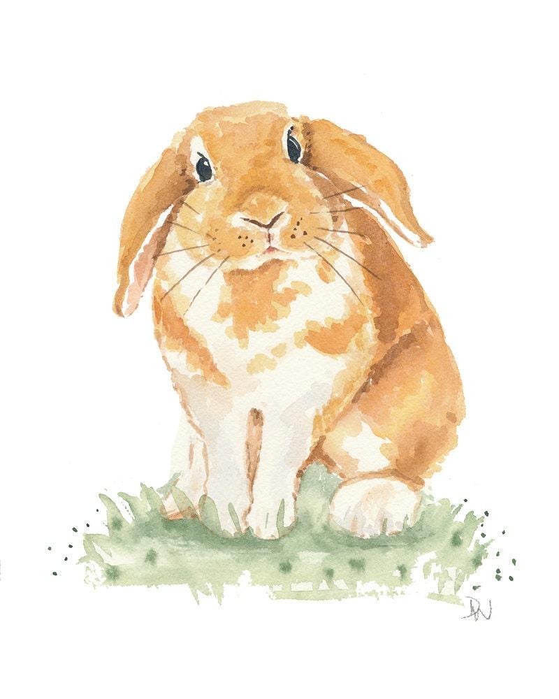 floppy earred rabbit watercolor   bunny art original painting rabbit