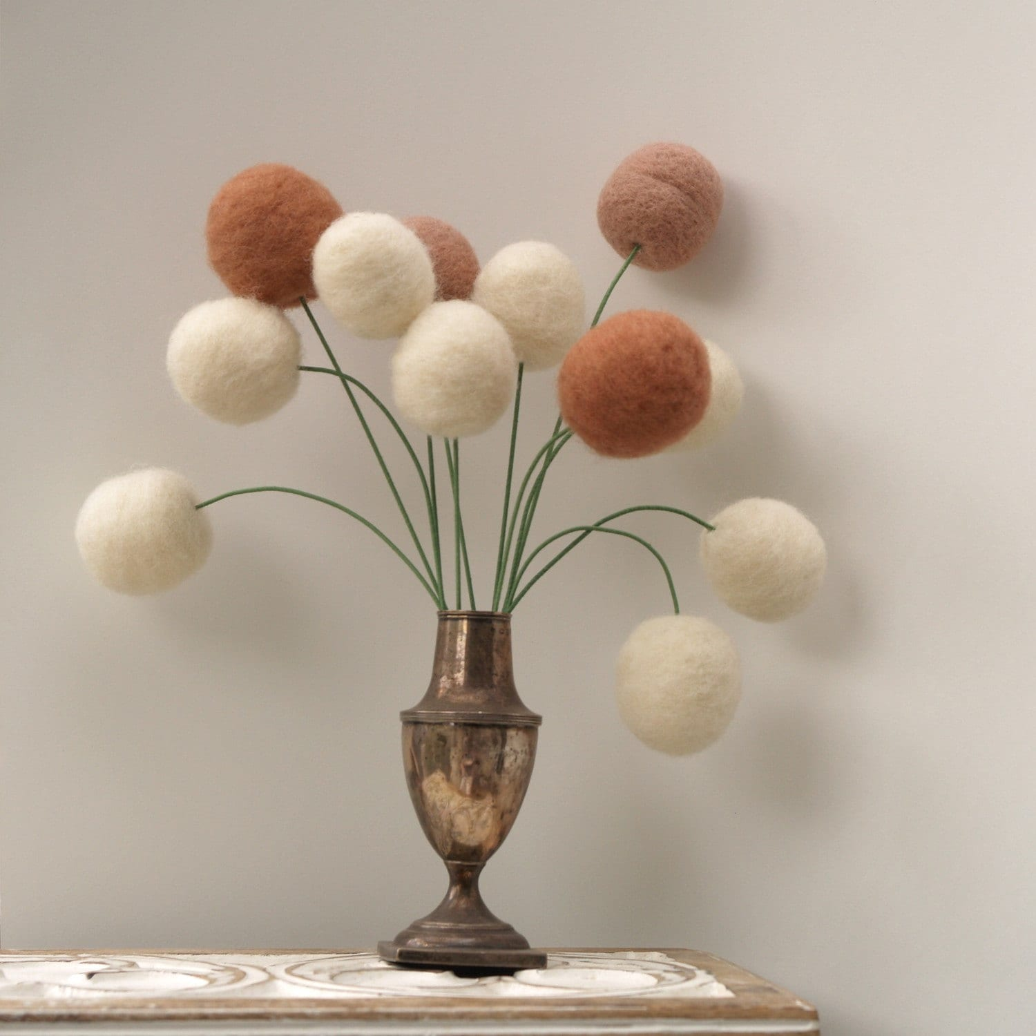 10 Large Brown and white Craspedia Stems - Spring Wool Blossoms eco friendly and ever lasting nature