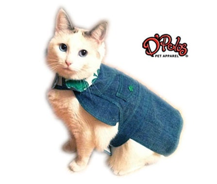 TRENDY St. Patrick's Day Denim Shamrock Coat for Cats