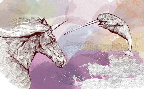Unicorn and Narwhal-Indie Illustration