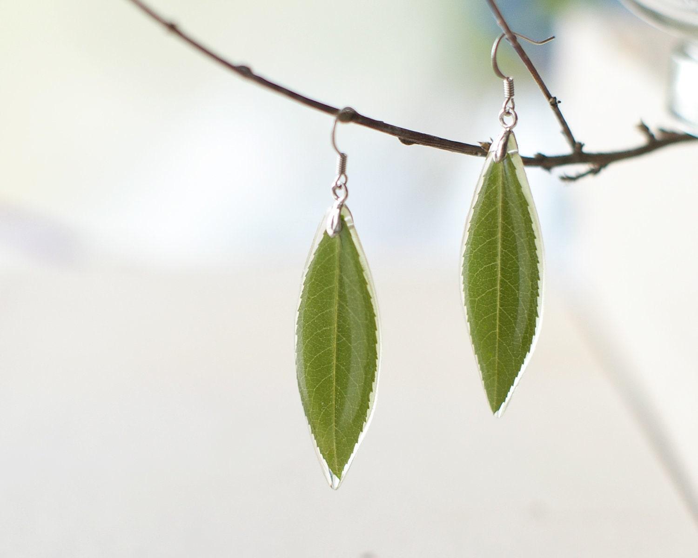 Real leaf earrings - Green nature inspired earrings - Amigdalus nana leaves