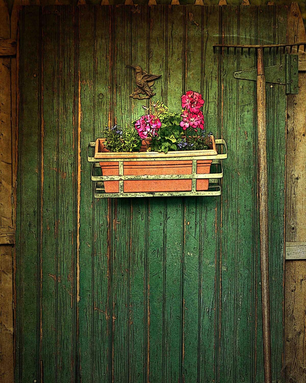 The Garden Door  fine art photography print 8x10 BOGO SALE