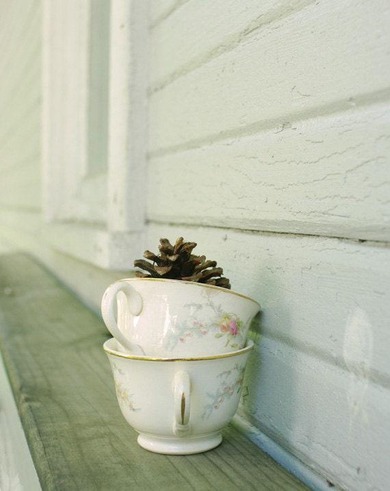 Winter Teacup Photograph - Pine Cone Tea - 8x10 print, vintage tea cups, rustic decor, soft and cozy, efpteam, fpoe - ErinBphoto