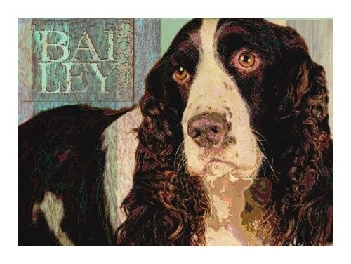 SPRINGER SPANIEL DOG Art Print MODERN GRUNGE ART POSTER Signed CUTE PUPPY -Bailey