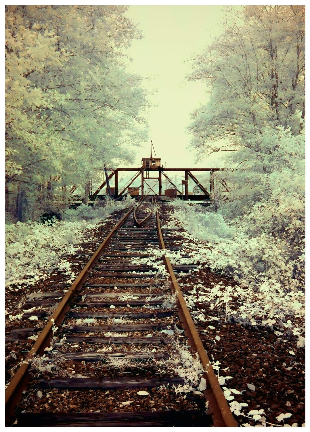 Old Train Bridge - infrared photographic print by Kevan Moran Aponte