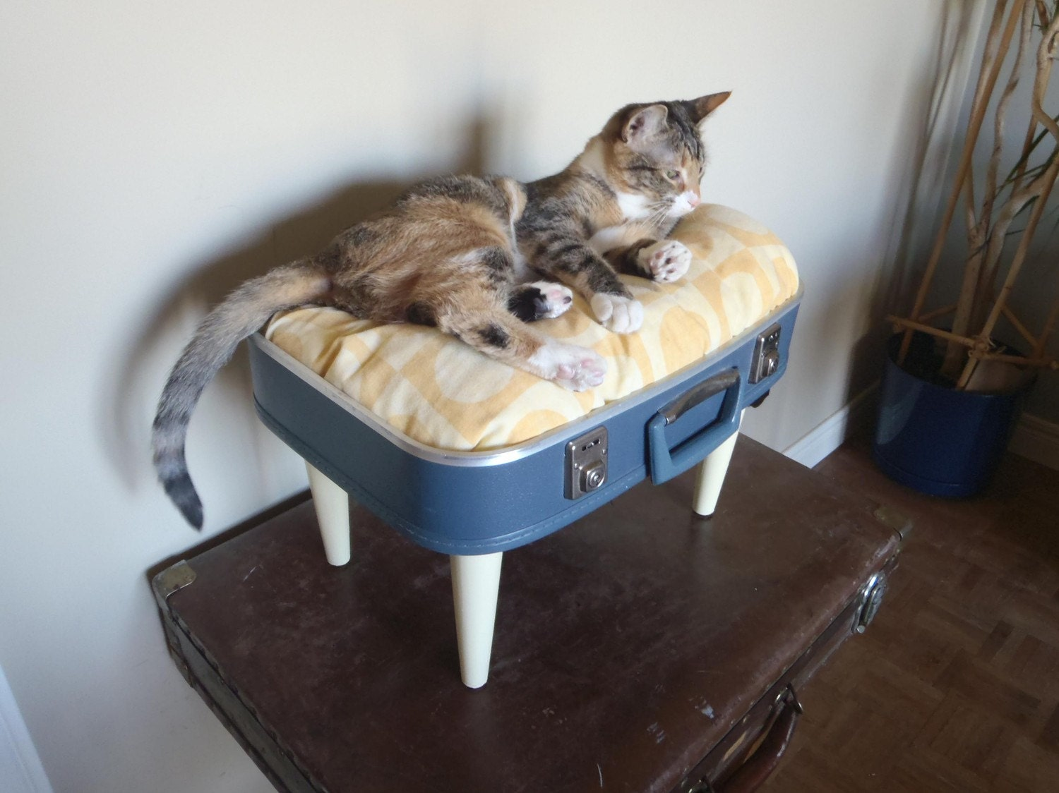 luggage cat bed