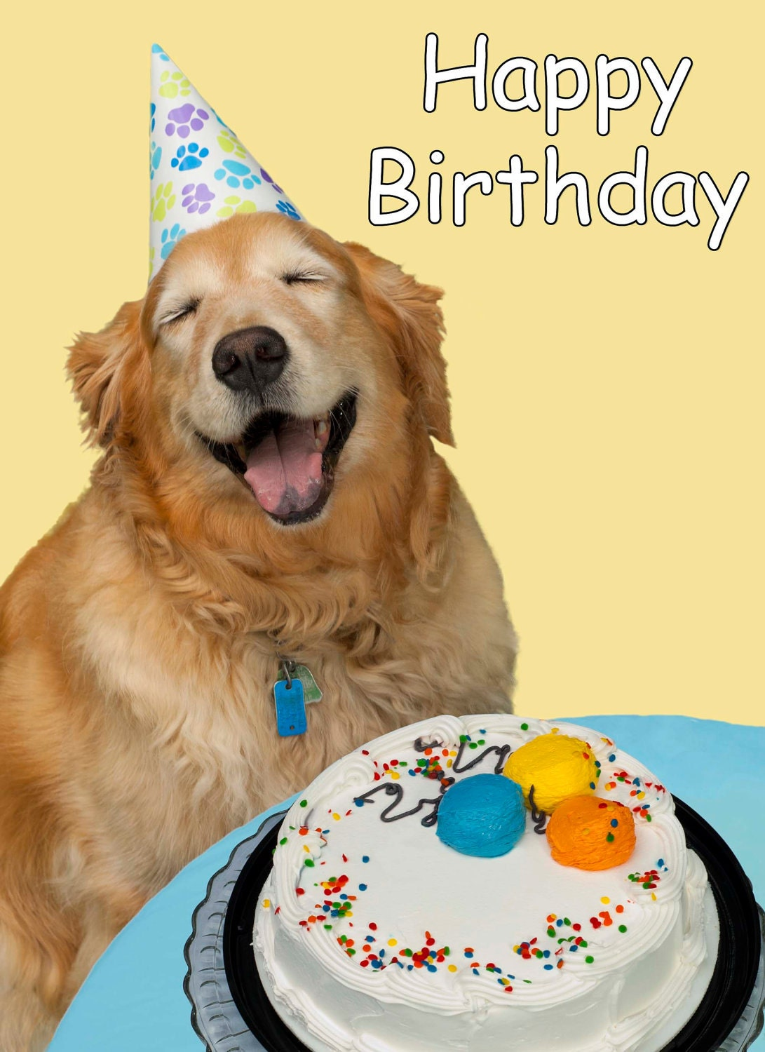 Image result for happy birthday with animals