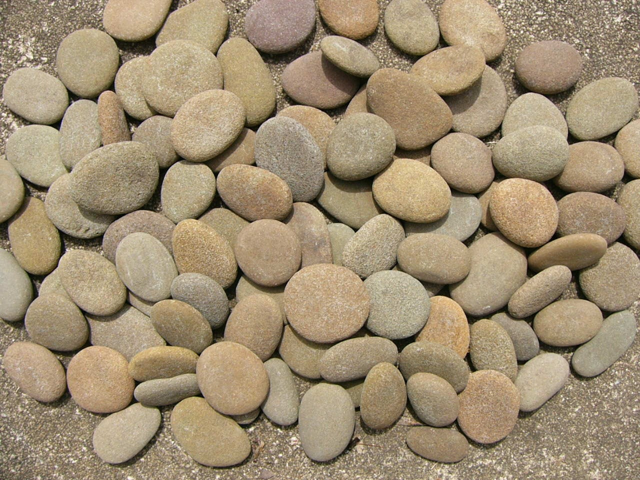 River rocks large mixed lot chubby small rounded by for Small river pebbles