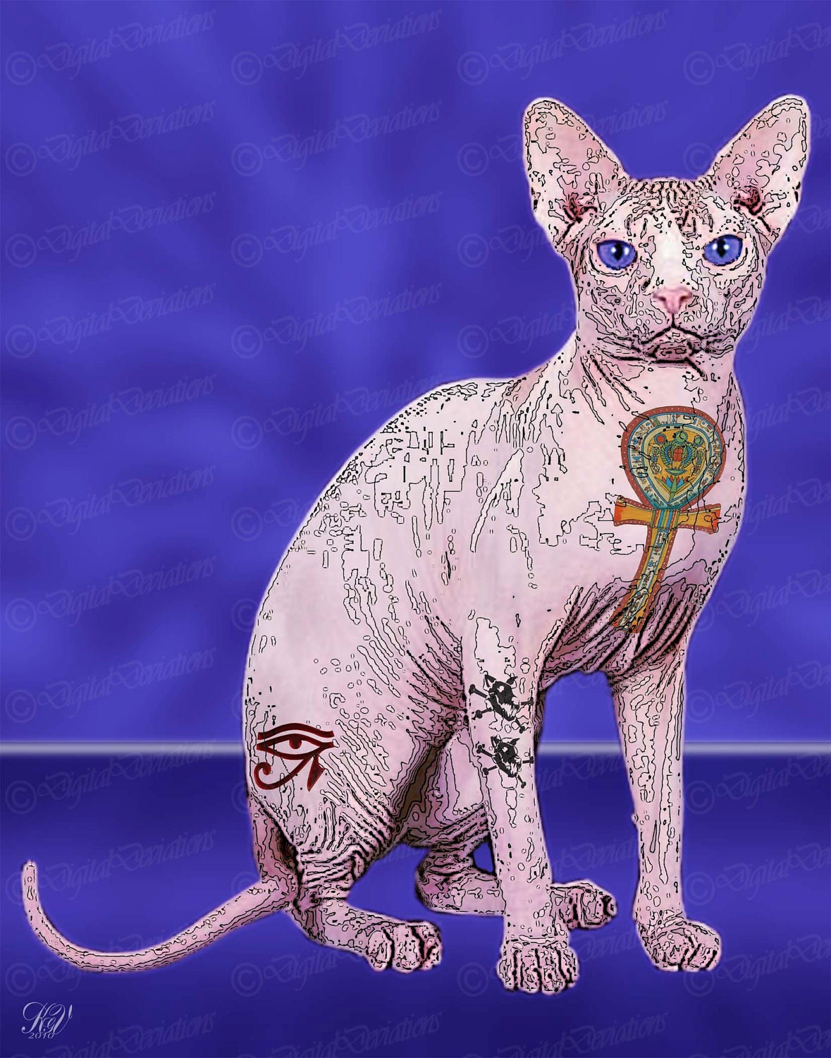 Sphynx e tattoos for Hairless cats with tattoos
