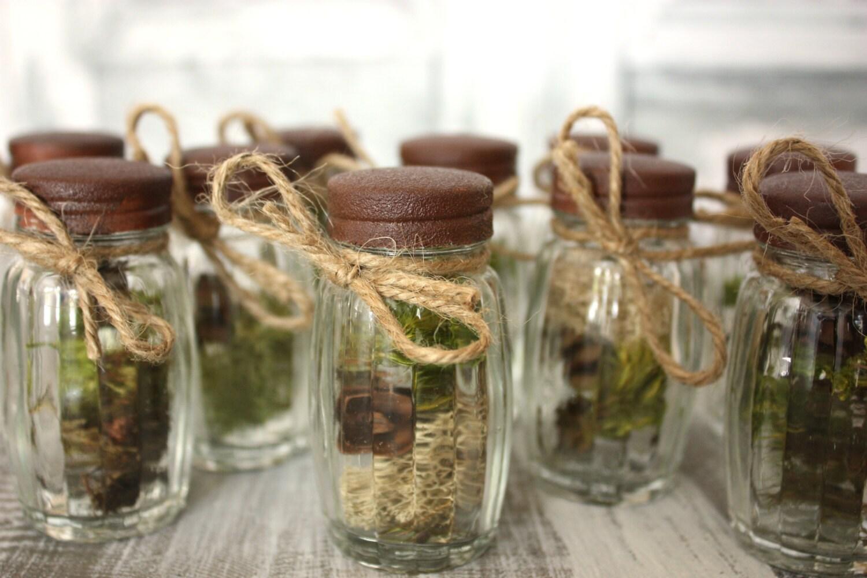 Pine Tree Seedling Wedding Favors